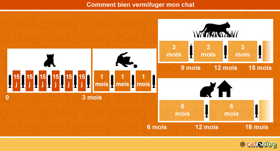 vermifuger chat 2